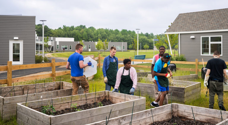 six adults tend a garden in the Welsh Campus
